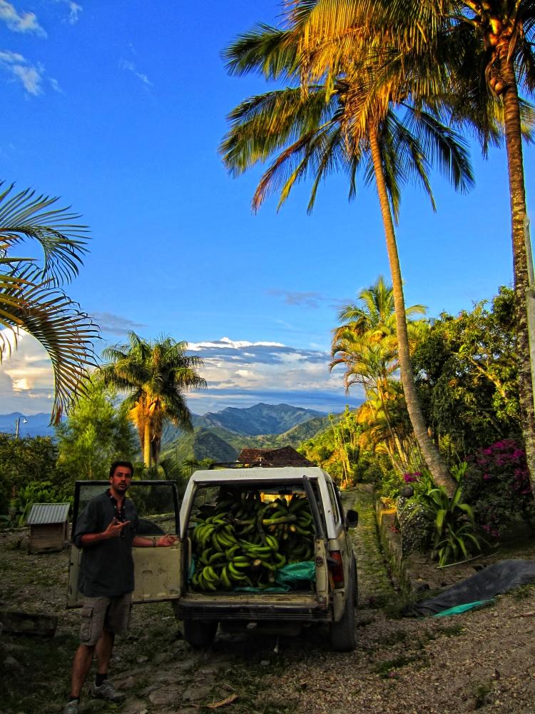 car full of bananas and amazing panoramic